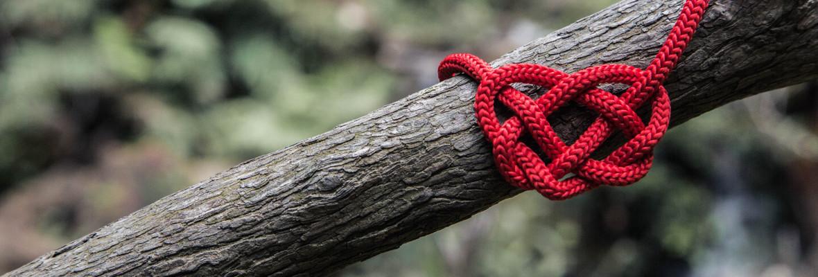 oksa ja sydänmuotoinen punainen solmu